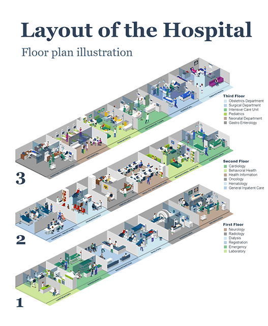 Layout of the Hospital